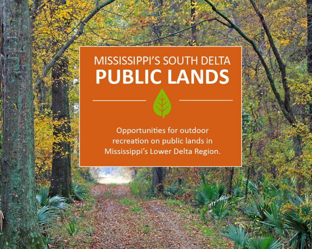 Public Lands in Mississippi's Lower Delta Region