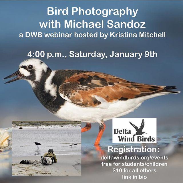 Delta Wind Birds webinar